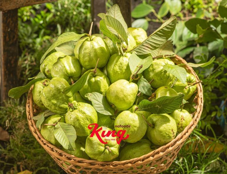 Ổi - trái cây nhiệt đới tốt cho sức khỏe