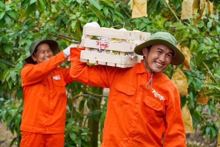 Kingfoods mang lại hạnh phúc từ nông trại cho người tiêu dùng